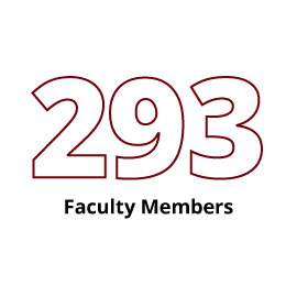 Infographic: 293 Faculty Members